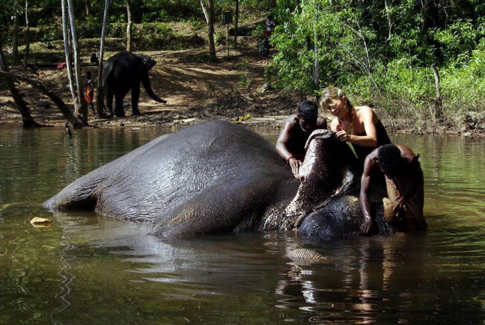 elefantfurdetes-indiaban.jpg