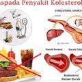 Jual Obat Kolesterol Di Apotik Kimia Farma