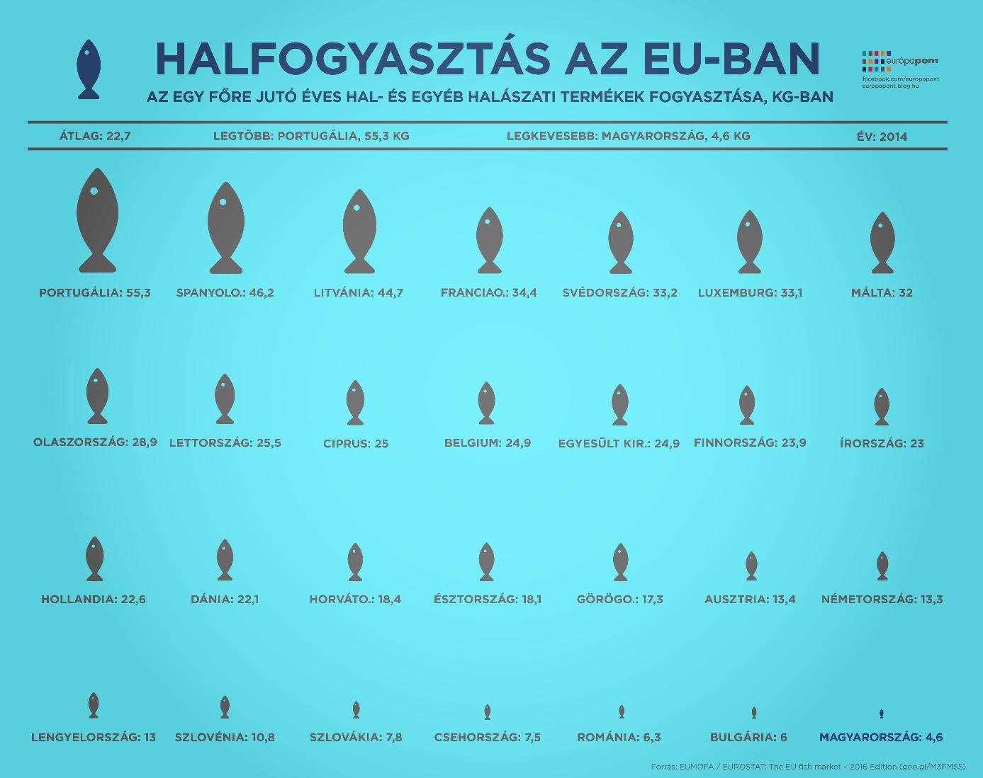 ildafit_hal_2.png