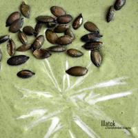 Levesek... hmm illatos, krémes, selymes (brokkoli/burgonya/zeller)