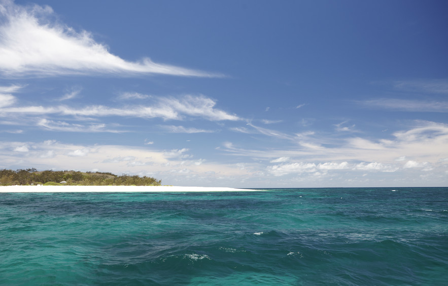 wilson_island_great_barrier_reef_qld.jpg