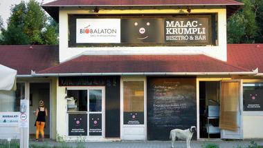 A legjobb balatoni étterem nyomában: Malackrumpli - update