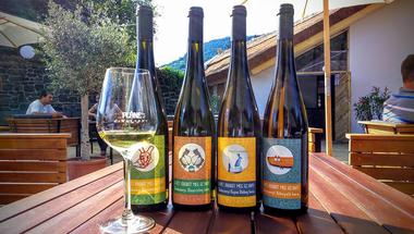 A legjobb balatoni borteraszok őszre