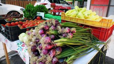 Badacsonyban van a Balaton legújabb termelői piaca
