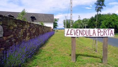 Levendula Porta: a farm, ahol élnél