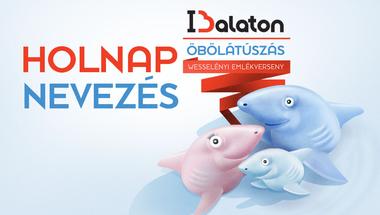 Jelentős kedvezménnyel indul az előnevezés az I love Balaton Öbölátúszásra