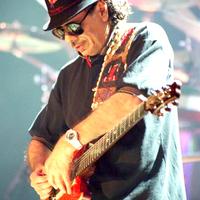 A 2008-as Kapcsolat koncert fellépője: Carlos Santana