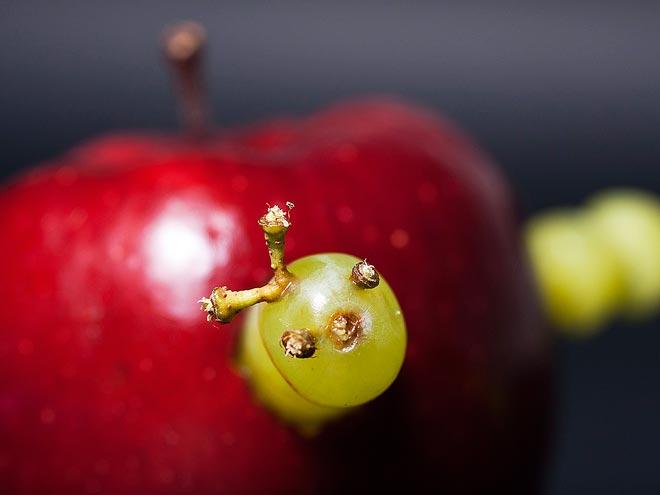 apple-660.jpg