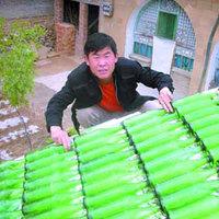 Kína, már megint megmutattad :) - SÖRtető!