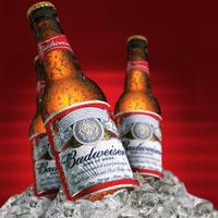 Budweiser SÖRténelem