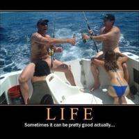 Felhőtlen élet!