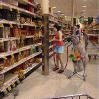 Bevásárlás WTF?! :) - Mennyi SÖR férhet az erszényébe?