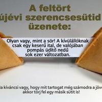 SÖRsüti :)