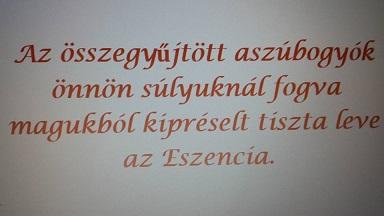 eszencia_mondat_k.jpg