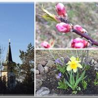 Szenvedés és feltámadás
