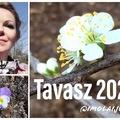 Tavaszhoroszkóp 2020. @ImolaiJudit