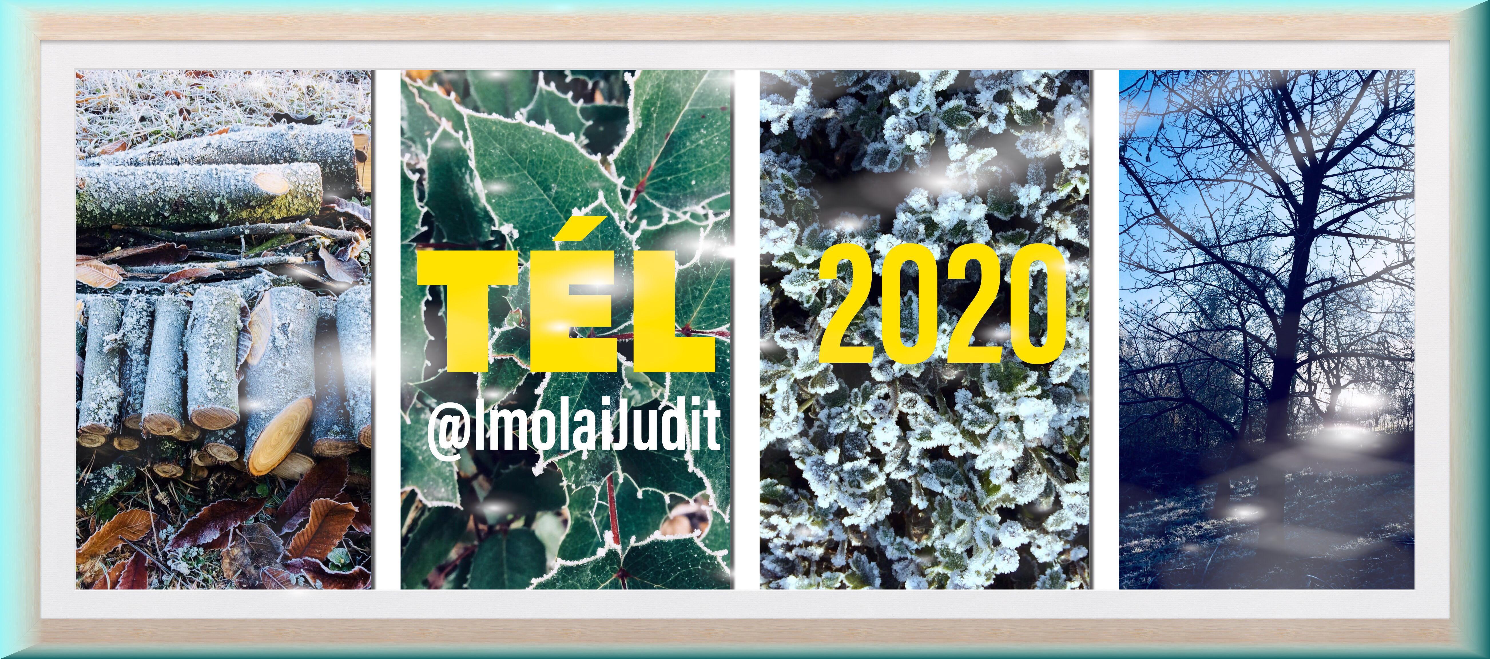 tel2020.JPEG
