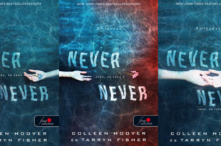 Colleen Hoover-Tarryn Fisher: Never never