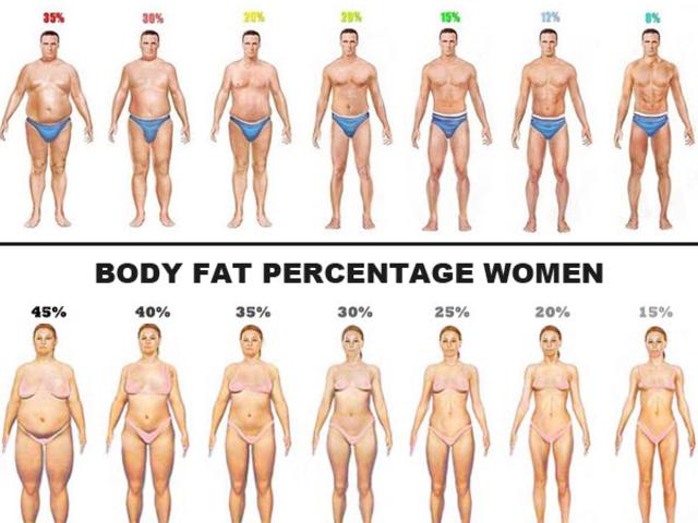 százalékos testzsír-vesztési cél