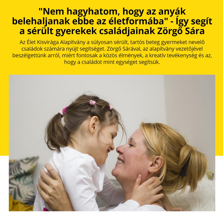 hajni_cikk.png