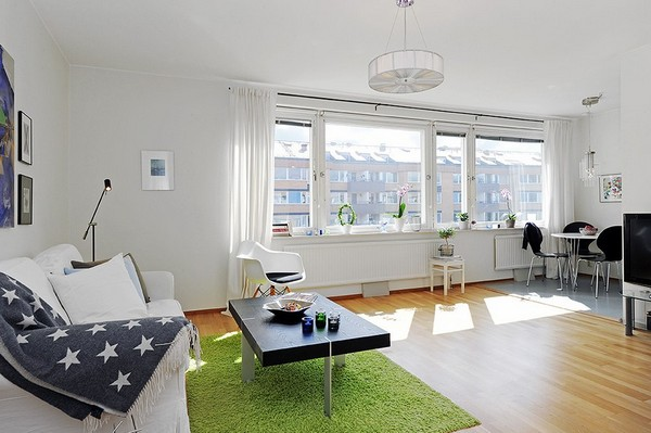 one-room-apartment-scandinavian1.jpg