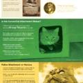 Miért szeretjük annyira a macskákat?