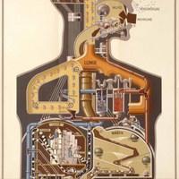 Az emberi gépezet