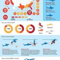 Cápatámadások világszerte