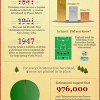 Karácsonyfa: igazi vagy mű?