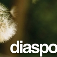 Anti-Facebook oldal: Diaspora