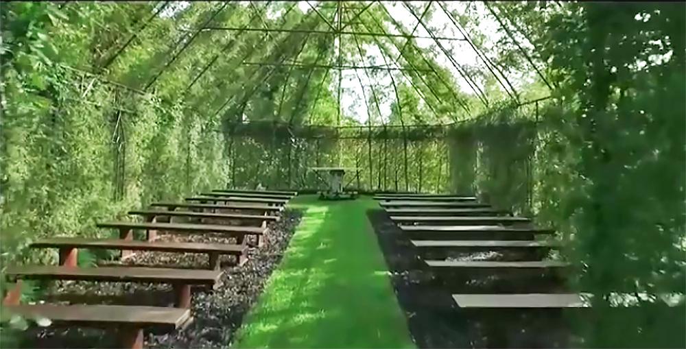 tree-church-barry-cox-new-zealand-final.jpg