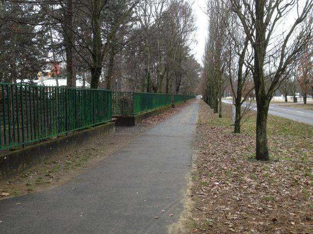 Futás Debrecen Nagyerdő