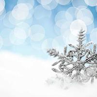 Mi mindenből lehet karácsonyfadísz?