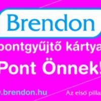Brendon Babaáruház törzsvásárlókártya