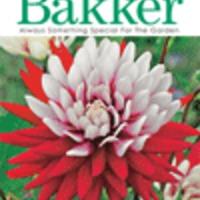 Bakker - Növény katalógus