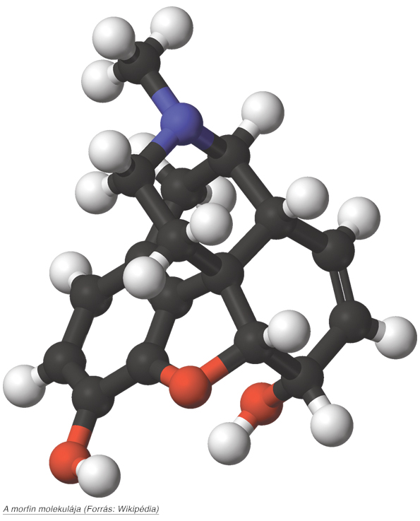 2_morfinmolekula.jpg