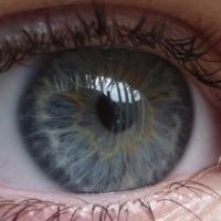 Egy éve volt: Az emberi szem [1] (ElPadre)
