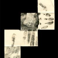 Fotogram - kemogram [4]