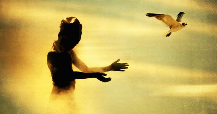 letting-go_bird.jpg