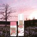 Újdonság - Bio illatok a Pur Edentől
