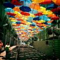 Ismét színes esernyők Agueda utcáin