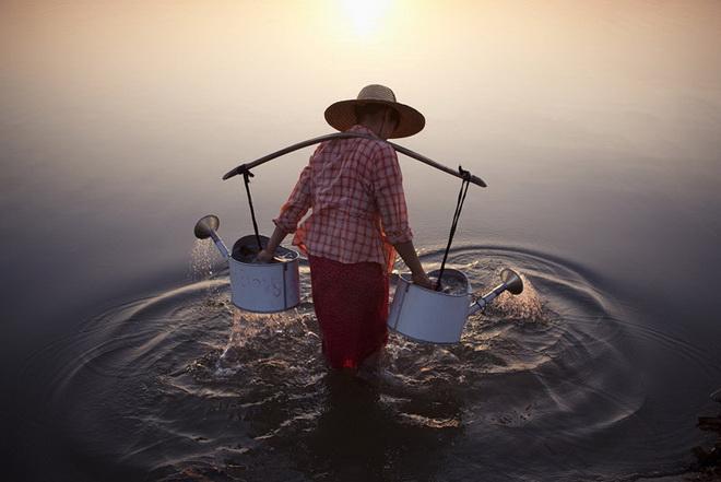 lady-in-water.jpg