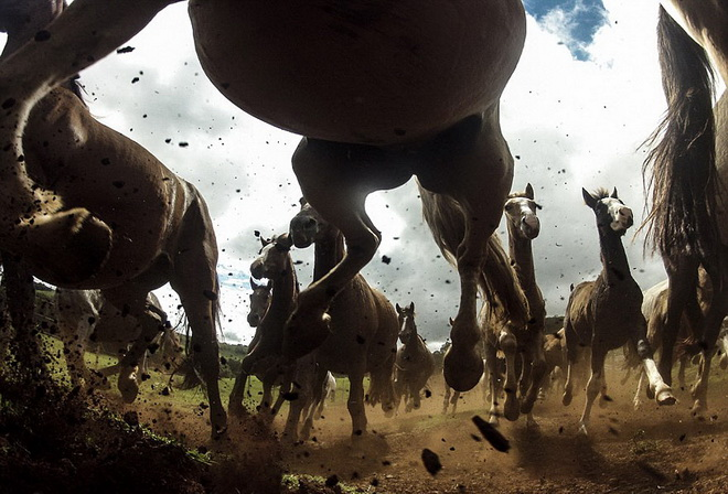 national-geographic-2013-03.jpg