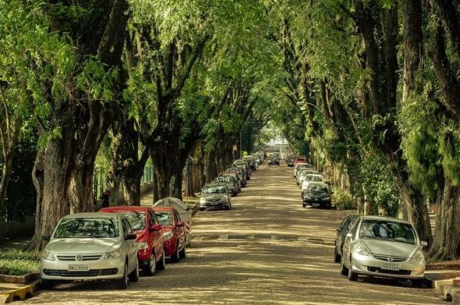 goncalo-de-carvalho-3.jpg