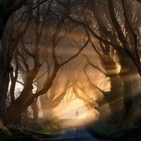20 varázslatos alagút a természettől