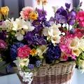Illatos virágszál... :)