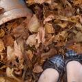 5 őszi cipőfelújítási inspiráció