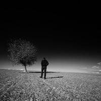 Magány