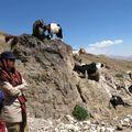 Damavand, Gosfand Sara, 3200 m