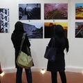 Tehran/photo exhibition at Tehran Garden
